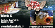 Fly Fishing Video-Carp